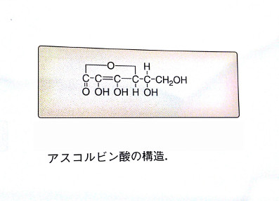 アスコルビン酸